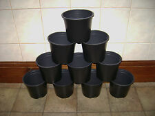 """1.5 LITRE ( 6"""" INCH)QUALITY BLACK  ROUND  PLASTIC PLANT POTS CHOOSE FROM 4 TO 18"""