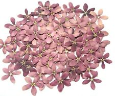 Beautiful Purple 5 Petals Organic Pressed Flowers Cute Size DIY Floral Crafts
