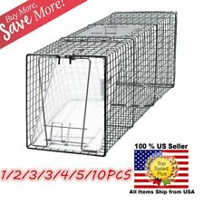 """Animal Trap 