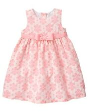 NWT Gymboree Family Brunch Pink Lace Dress Baby Toddler Girls Easter Many sizes