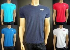 "Men's Hollister T-shirt NWT ""Pearl Street"" V-neck Shirt New HCO 2013 Muscle"