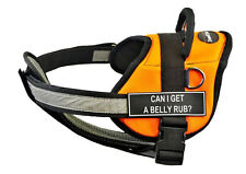 DT Works Orange Chest Support Dog Harness Velcro Fun Patch CAN I GET A BELLY RUB