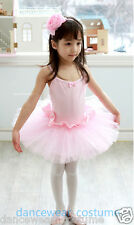 Pink Girl's Fairy Party Ballet Tutu Dance Gymnastics Skating Leotard Skirt Dress