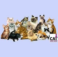 Cat Shirt Cool Cats Tee Different Colors of Kittys T-Shirt Pet Animals