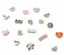 Silver Floating Charms - Living Memory Lockets - Love - Family - Symbols