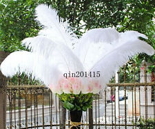 Super feather 20-200pcs white natural ostrich feathers 24-26inch / 60-65cm