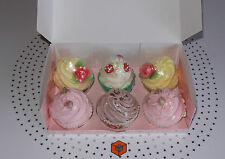High Quality Cupcake Box - Holds 6 Cupcakes With Insert