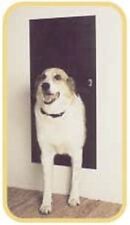 Solo Pet Door Automatic Electronic Dog and Cat Door