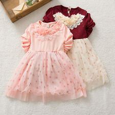 New Baby Girls Toddler Long Sleeve Chiffon Floral Embroidered 3D Princess Dress