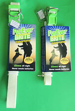 """FurEver Brite Safety Dog Collar 19"""" x 3/4"""" or 25"""" x 1"""" Davis Veterinary Products"""