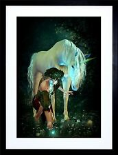 UNICORN PIXI WOMAN POND FIREFLIES PHOTO ART PRINT FRAME MOUNT F12X1570