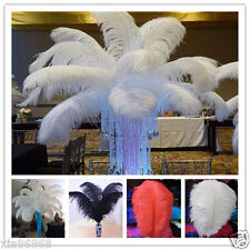 Wholesale 10-200pcs High Quality Natural WHITE OSTRICH FEATHERS 6-24inch/15-60cm