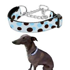 Dog Collar Martingale Blue Dot M  L Greyhound Whippet Training Choke Chain Pet