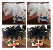 Wholesale 10/50/100pcs High Quality Natural OSTRICH FEATHERS 6-22 inch/15-55cm
