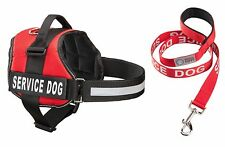 SERVICE DOG Vest Harness & Matching Leash Set, by Industrial Puppy