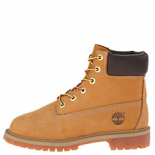 Timberland 6 Inch Premium Wheat Junior's Waterproof Boots 12909