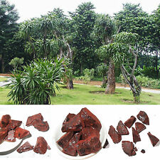 5oz Dragon's Blood Resin Incense 5oz 100% Natural Wild Harvested w/charcoal EC