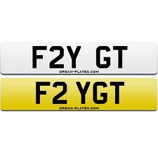FLY GT number plate FRY GT 911 GT3 RS GTS GT2 996 997 991 Golf GTi pilot F2 YGT