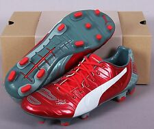 PUMA Men Cleats evoPOWER 1.2 Graphic FG Soccer Football Shoes Spike GYM 10342301