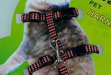 Pet Cat Kitten Small Dog Puppy Rabbit Nylon Harness Collar Leash Lead Adjustable