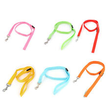 Pet Dog LED Flash Light Swivel Hook Training Walk Nylon Lead Leash Rope
