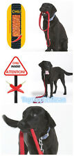 Patento Dog Control Anti Bite Stop Chew Chili Leash - Stop Dog Chewing Leash