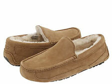 NEW UGG AUSTRALIA MEN ASCOT CHESTNUT SUEDE 5775 SHEEPSKIN ORIGINAL SHOES