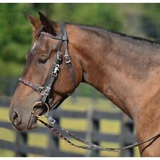 ARAB  Size  HALTER BRIDLE & REINS made from BETA BIOTHANE (with BLING)