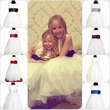 FLOWER GIRL WEDDING BRIDESMAID DRESS PARTY FAIRYTAIL GOWN JUNIOR PRINCESS PETALS