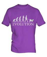 SCHIPPERKE EVOLUTION OF MAN MENS T-SHIRT TEE TOP DOG LOVER GIFT WALKER WALKING