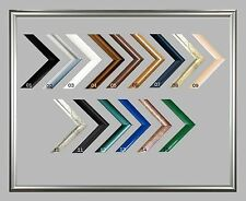 Photo Poster Picture Frame Rotterdam 15,5 x 31,5 Inch ( 39,4x80 cm )