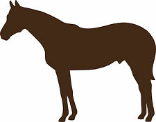 Horse contour cut decal vinyl sticker wall window vehicle display silhouette