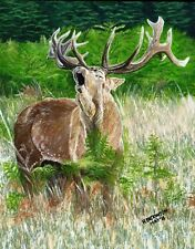 "Art Print or Canvas - ""Singing Stag"""