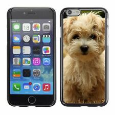Hard Phone Case Cover Skin For Apple iPhone Havanese silk dog puppy