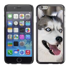 Hard Phone Case Cover Skin For Apple iPhone Playful husky dog outdoo