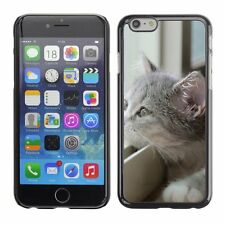 Hard Phone Case Cover Skin For Apple iPhone gray kitten ing out
