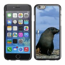 Hard Phone Case Cover Skin For Apple iPhone Fur seal hides his treas