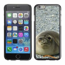 Hard Phone Case Cover Skin For Apple iPhone Fat seal posing photogra