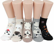Mini Puppy Women's Socks 5pairs(5color)=1pack Made in Korea Woman Girl Big Kids