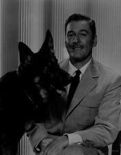 Errol Flynn sitting on a Chair wearing a Suit Beside a Dog High Quality Photo