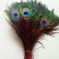Wholesale 10-100pcs Peacock feathers eye 10-12 inches / 25-30 cm Red