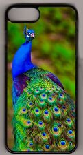 Beautiful Peacock Apple iPhone or iPod Case or wallet