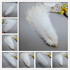 wholesale! 10-100pcs Exotic pointy White ostrich feathers 14-24 inches/35-60 cm