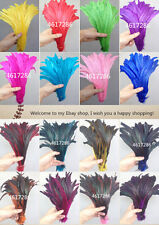 Wholesale! 100 pcs beautiful rooster tail feathers 12-14 inches /30-35cm