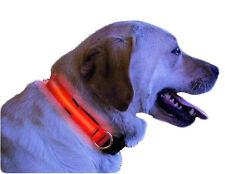 GearXS Flashing Waterproof 4-Way LED Glow Bright Safety Dog Collars - 2 Sizes