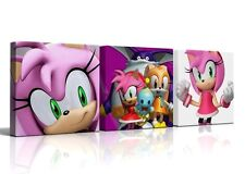 3 X DEEP EDGE CANVAS PICTURES SONIC HEROES AMY ROSE  FREE P&P  NEW