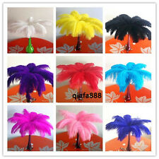 Hot! DIY decoration 20/50/100pcs natural ostrich feathers 8-10inch/20-25cm