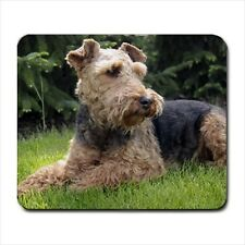 Welsh Terrier Dog - Mousepads or Coasters (8 Styles) -Bb5054
