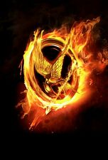 NEW HUNGER GAMES CATCHING FIRE NEW MOVIE WALL ART PRINT PREMIUM POSTER