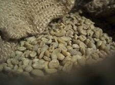 Up To 100 lbs Colombian Santa Barbara Estates Excelso E/P Green Coffee Beans